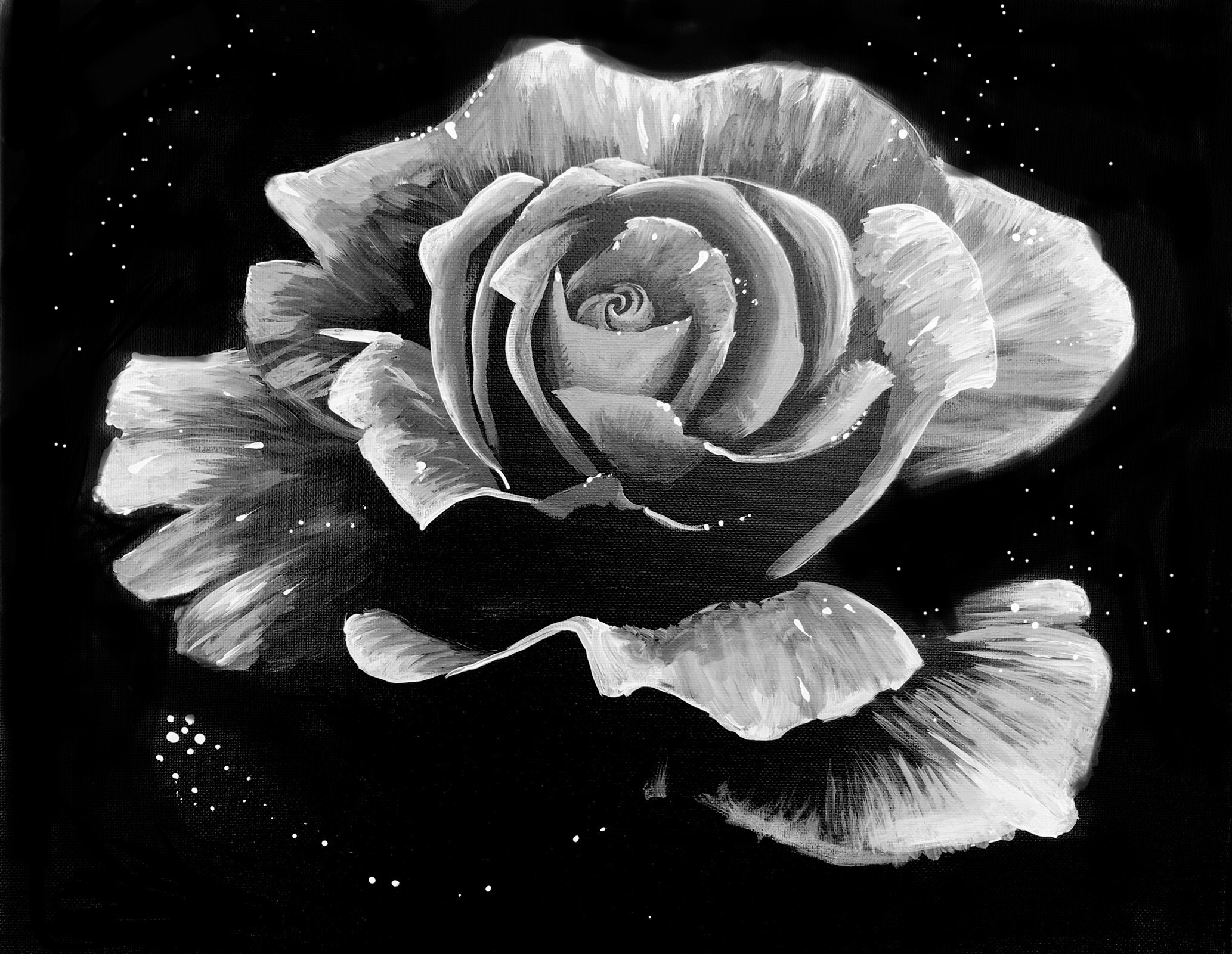 A Dewy Rose Black and White paint nite project by Yaymaker