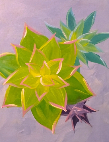 A Succulents paint nite project by Yaymaker