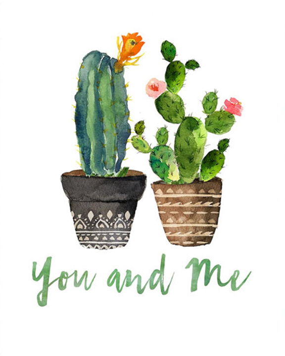 A Cactus Love experience project by Yaymaker