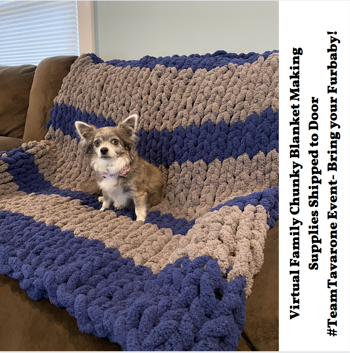 A Virtual Chunky Blanket Making with Tammy  Lucky Bring your Furbaby Supplies Shipped experience project by Yaymaker