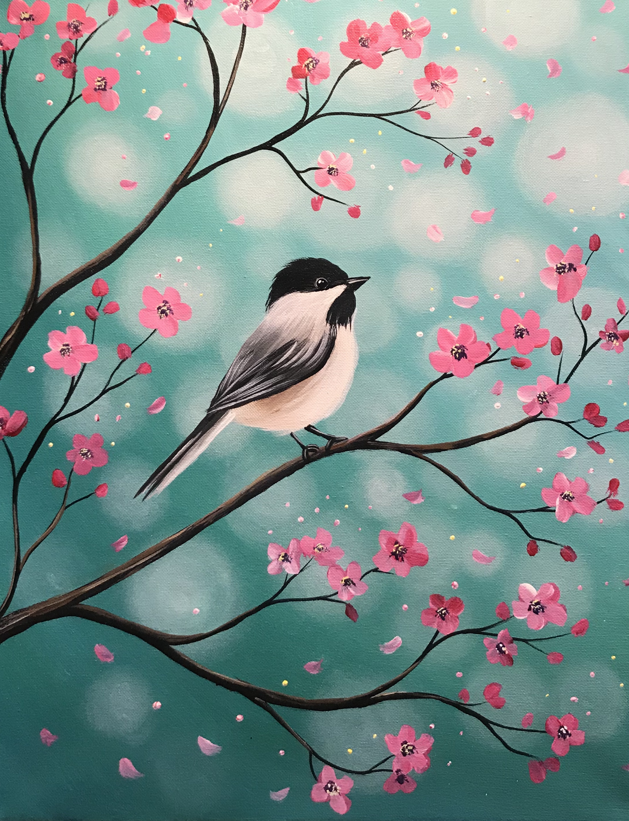 A Chickadee Cherry Blossoms experience project by Yaymaker