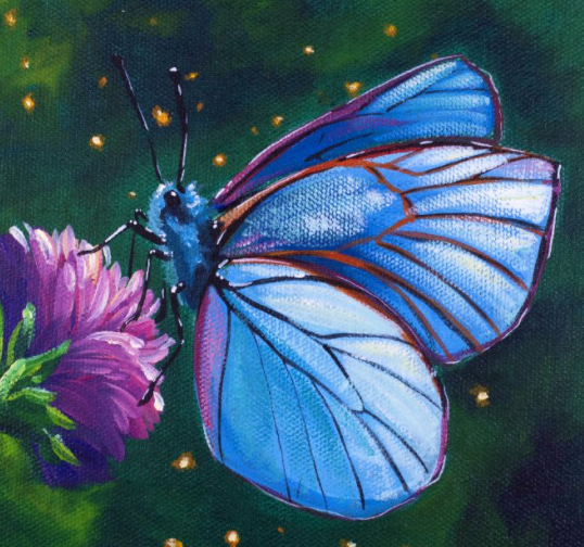 A Butterfly afternoon  experience project by Yaymaker