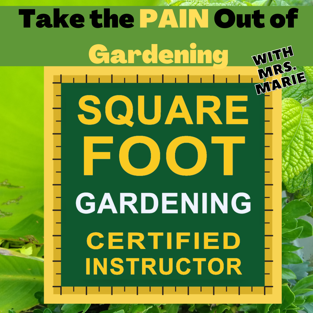 A Take the Pain out of Gardening Square Foot Gardening Basics With Certified Instructor Mrs Marie experience project by Yaymaker