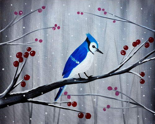 A Winter Blue Jay experience project by Yaymaker