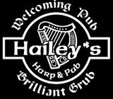 A photo of a Yaymaker Venue called Hailey's Harp & Pub located in Metuchen, NJ