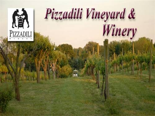 A photo of a Yaymaker Venue called Pizzadili Winery located in Felton, DE