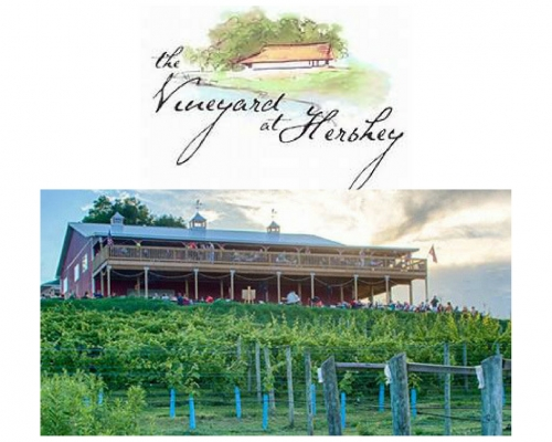 A photo of a Yaymaker Venue called The Vineyard and Brewery at Hershey located in Middletown, PA