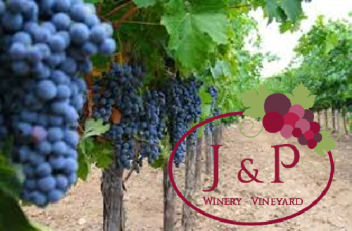 A photo of a Yaymaker Venue called J & P Winery Gettysburg located in Gettysburg, PA